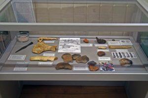 sava-100-exhibition-3