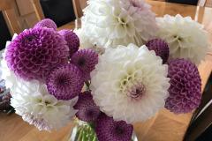 Daphne Preston:- Dahlias in a Vase