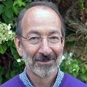 Martin Lipson1