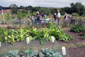 allotments4