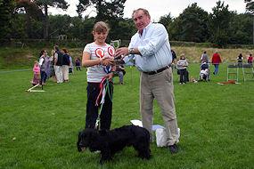 dogwinner2008